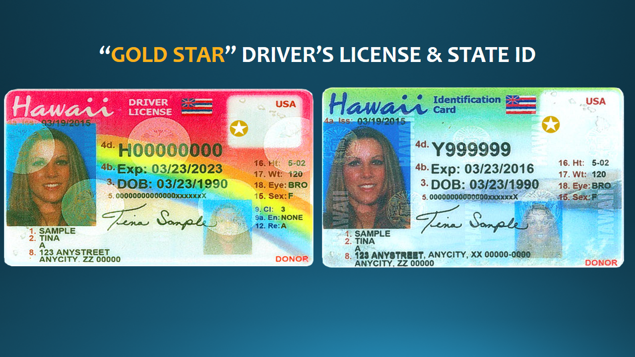 Gold Star Drivers License or State ID v2