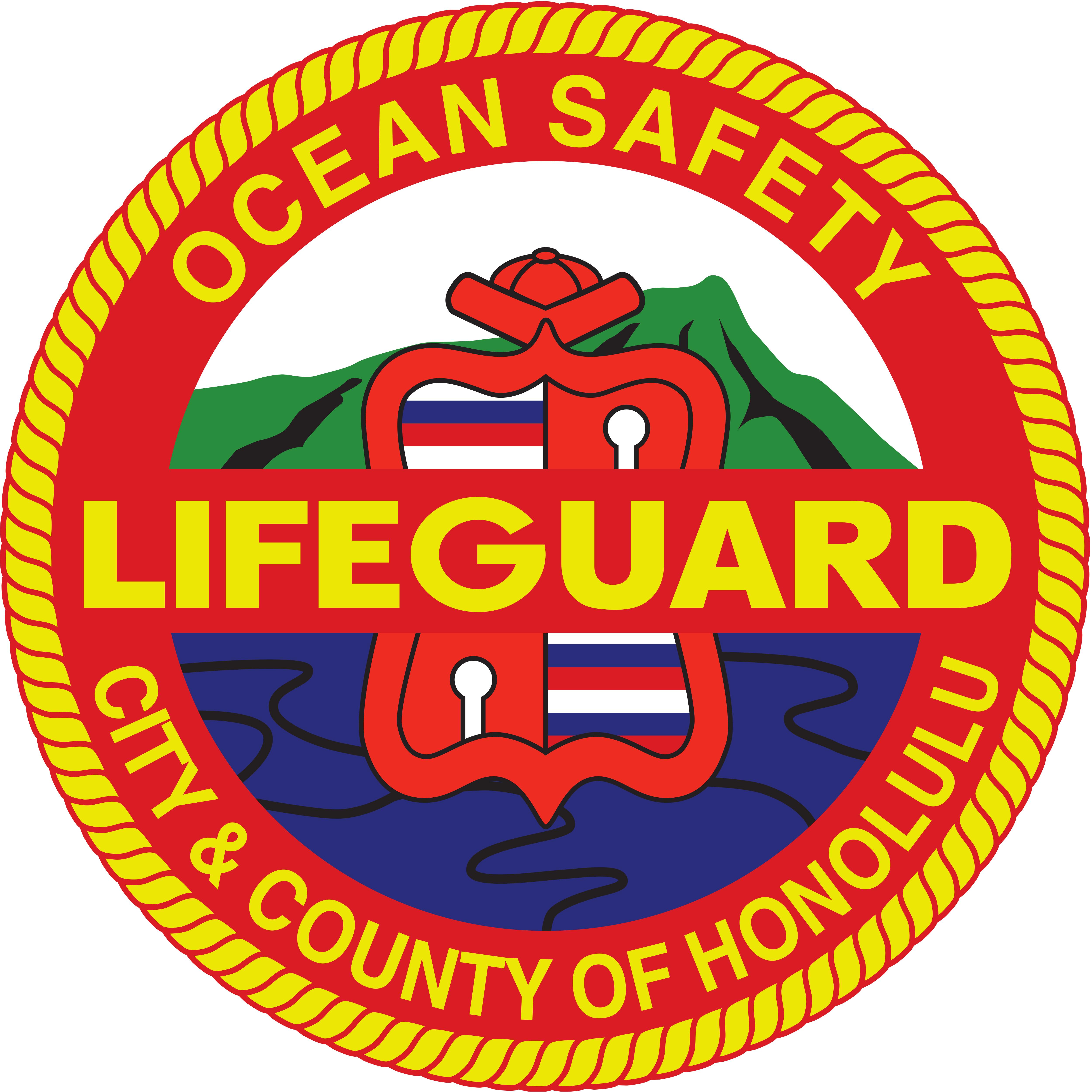 Lifeguard Seal